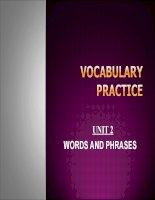 Advanced Language Practice (Vocabulary)