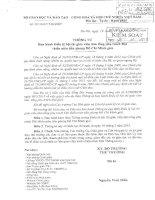Điều lệ thi Tổng phụ trách giỏi(thông tư 52)