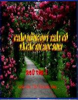 Bài 4 Những câu hát châm biếm  Bài giảng chuyên đề Ngữ văn 7