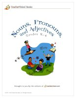 teacher''''s vision book: teaching nouns, pronouns and adjectives - Grade 4