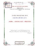 hóa học hữu cơ chuyên đề amin, amino axit, protein