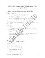 Phương pháp giải các dạng Toán Đại số nâng cao lớp 10