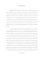 THỰC TRẠNG VÀ MỘT SỐ KIẾN NGHỊ VỀ CÔNG TÁC KẾ TOÁN VỐN BẰNG TIỀN TẠI CÔNG TY CỔ PHẦN ĐẦU TƯ VÀ DỊCH VỤ SHC VIỆT NAM