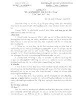 kế hoạch thực hiện tuần sinh hoạt tập thể đầu năm học 2013 - 2-14