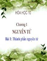 Bài 1. Hoá 10 nâng cao. Tp Nguyên Tử