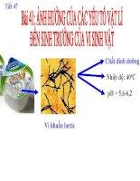các yếu hóa học ảnh hưởng đến vi sinh vật