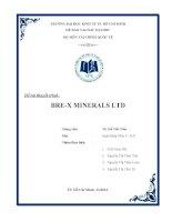 Tiểu luận môn thị trường tài chính Đề tài thuyết trình BREX MINERALS LTD