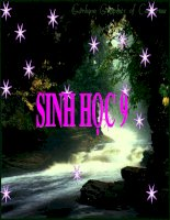 bai 8 NHiem sac the