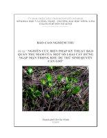 nghiên cứu biện pháp kỹ thuật bảo quản trụ mầm của một số loài cây rừng ngập mặn trong khu dự trữ sinh quyền cần giờ