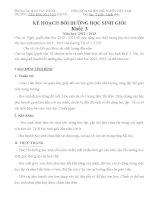 Kế hoạch bồi dưỡng HSG tổ chuyên môn tổ 3