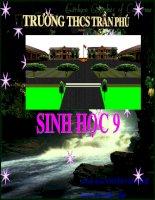 Bai 8. Nhiem Sac the