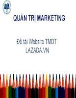 Tiểu luận môn quản trị marketing Website thương mại điện tử LAZADA