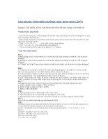 Các  DẠNG TOAN bồi DƯỠNG học SINH GIỎI lớp 5