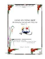 Tài liệu bồi dưỡng học sinh giỏi môn Tiếng Việt lớp 45