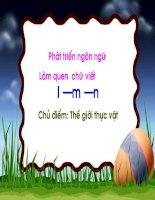 Chủ đề: Thực vật - Làm quen chữ viết l, n, m