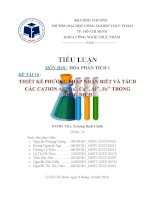 Tiểu luận hóa phân tích 1:Thiết kế phương pháp nhận biết và tách các cation trong dung dịch