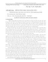 skkn bồi dưỡng học sinh giỏi lớp 9 với dạng bài tập p205 tác dụng với naoh hoặc koh