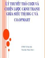 thuyết trình lý thuyết trò chơi và chiến lược cạnh tranh giữa siêu thị big c và co.opmart