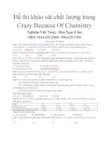 đề thi khảo sát chất lượng trang crazy because of chemistry