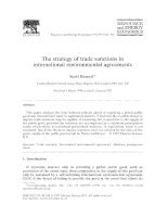 the strategy of trade sanctions in international environmental agreements