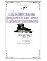 kế hoạch marketing cho sản phẩm giầy trượt bánh thẳng hàng in line skate của công ty pegasus sports international