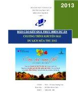 tiểu luận môn quản lý dự án chương trình khuyến mại du lịch mùa thu 2012