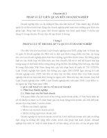 báo cáo chuyên đề pháp luật liên quan đến doanh nghiệp