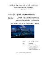 lập kế hoạch maketting cho một số sản phẩm của pegasus sports international