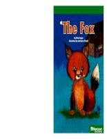 the fox social studies