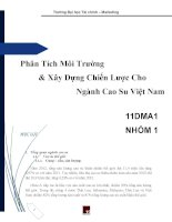 phân tích môi trường & xây dựng chiến lược cho ngành cao su việt nam