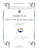 Giáo án Tiếng Anh thí điểm lớp 10 Language unit 8