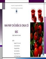thiết kế công nghệ và nhà máy thực phẩm nhà máy chế biến cà chua cô đặc