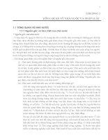 Bài giảng môn học Luật kinh doanh