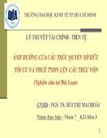TIỂU LUẬN LÝ THUYẾT TÀI CHÍNH TIỀN TỆ ẢNH HƯỞNG CỦA CẤU TRÚC QUYỀN SỞ HỮU NGHIÊN CỨU TẠI ĐÀI LOAN