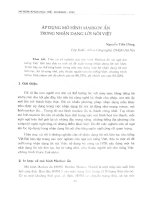 Áp dụng mô hình Markov ẩn trong nhận dạng lời nói Việt