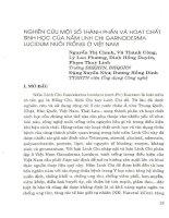 Nghiên cứu một số thành phần và hoạt chất sinh học của nấm Linh chi Garnoderma Lucidum muôi trồng ở Việt Nam