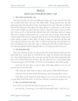 BÁO cáo THỰC tập CHUYÊN NGÀNH HÀNH CHÍNH TÌNH HÌNH HOẠT ĐỘNG của cơ QUAN và văn PHÒNG  ủy BAN NHÂN dân THÀNH PHỐ PLEIKU