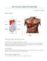 Tìm hiểu về gan và các bệnh