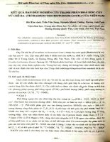 Kết quả ban đầu nghiên cứu thành phần hóa học cây tứ chẻ ba (Tetradium Trichotumum Lour.) của Việt Nam
