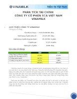 tiểu luận phân tích tài chính công ty cổ phần sữa vietnam vinamilk