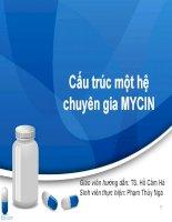 Cấu trúc một hệ chuyên gia MYCIN
