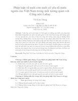 Pháp luật về nuôi con nuôi có yêu tố nước ngoài của Việt Nam trong mối tương quan với Công ước Lahay