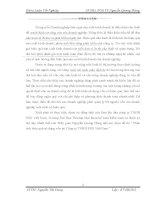 Phân tích hiệu quả sử dụng vốn tại Công ty TNHH ESD Việt Nam