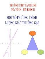 Bài giảng Đại số 11 chương 1 bài 3 Một số phương trình lượng giác thường gặp