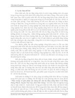 Tiểu luận THỰC TRẠNG VÀ GIẢI PHÁP XÂY DỰNG KẾT CẤU HẠ TẦNG NÔNG THÔN