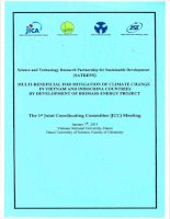 Multi-beneficial for mitigation of climate change in Vietnam and Indochina countries by development of biomass energy project