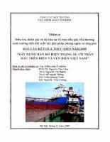 Báo cáo kết quả thực hiện năm 2009 Xây dựng bản đồ hiện trạng sự cố tràn dầu trên biển và ven biển Việt Nam