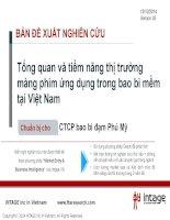 Tổng quan và tiềm năng thị trường màng phim ứng dụng trong bao bì mềm tại Việt Nam