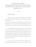 skkn MỘT SỐ BIỆN PHÁP NHẰM NÂNG CAO CHẤT LƯỢNG DẠY HỌC PHÂN MÔN TIẾNG VIỆT – TRONG CHƯƠNG TRÌNH NGỮ VĂN 7