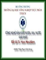 CÔNG NGHỆ SẢN XUẤT RƯỢU, BIA, NƯỚC GIẢI KHÁT Đề tài  Hoa Houblon